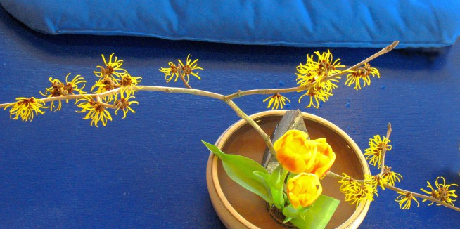 Kalapa Ikebana: The Art of Flower Arranging [Online] with  Shelley Pierce