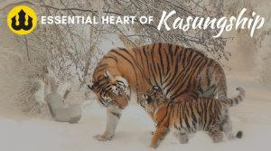 Essential Heart of Kasungship