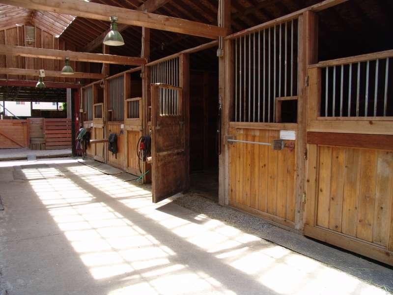 inside-little-barn-6-19-09-1